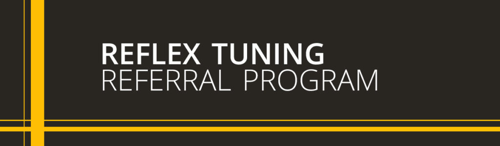 Reflex Tuning VW Audi Service Repairs NH
